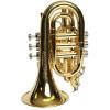 Phaeton Pocket Trumpet