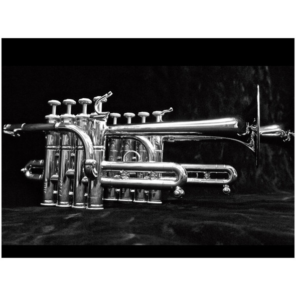 Stomvi Elite Bb/A Piccolo Trumpet