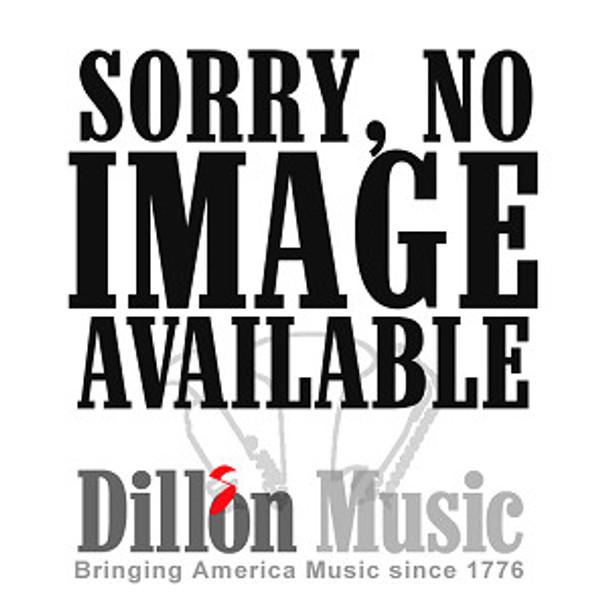 Dillon Alto Flute