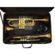 Marcus Bonna 2 Trumpets and Flugel Case- Black