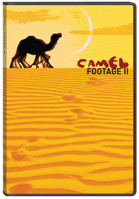 Camel Footage II