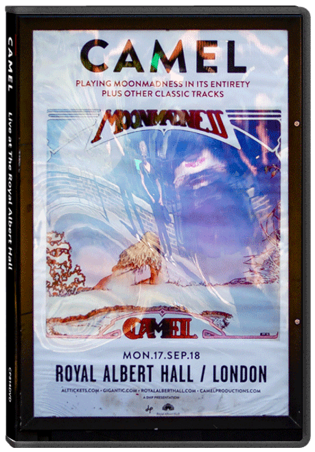 Blu-ray:  Camel Live at The Royal Albert Hall