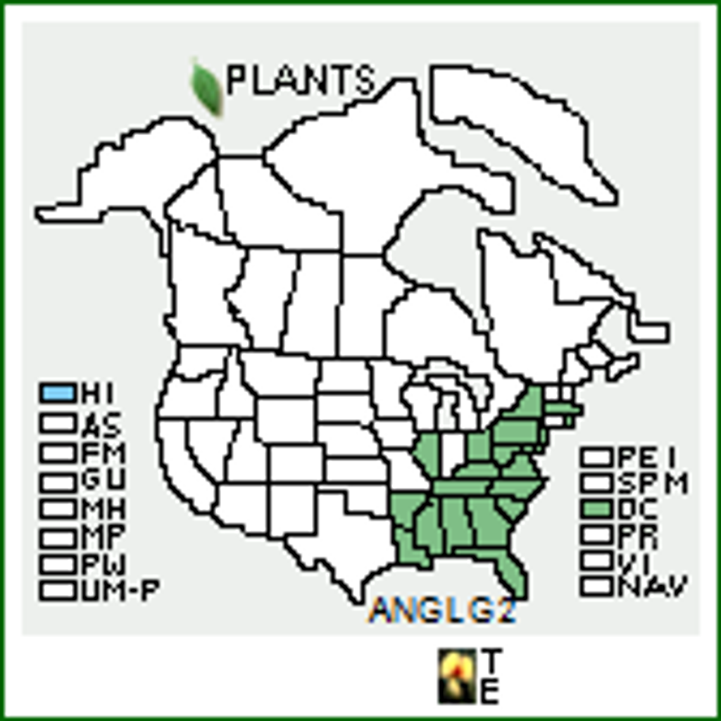 Andropogon glomeratus USA Native Range Map