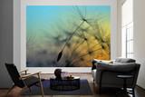 Flying Dandelion 1 Mural