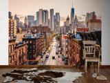 NewYork Views 2 Mural