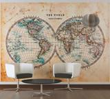 The World in Hemispheres 1 Mural