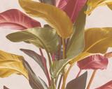 RW6639 Jungle  Wallpaper