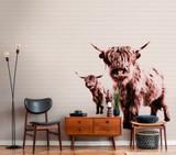 Highland Calf Mural
