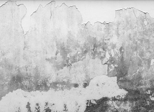 Brittle Wall Mural