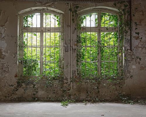 Old Window Mural