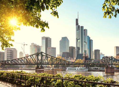 Frankfurt City Mural