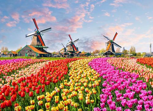 Windmills Amsterdam Mural