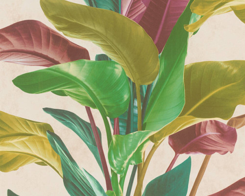 RW6633 Jungle  Wallpaper