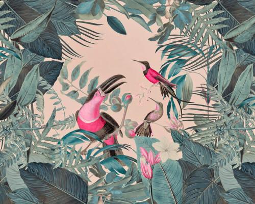 Birds in the tropics