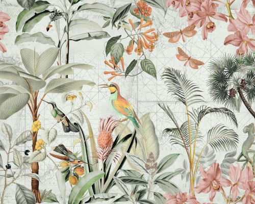 Colourful birds in the tropical scene 2