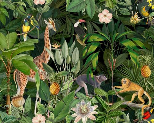 Animals in Jungle 2