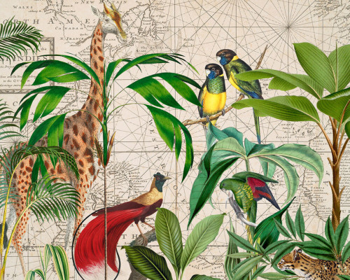 Animals and maps