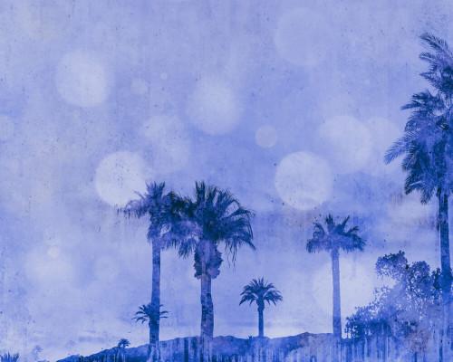 California dreaming blue