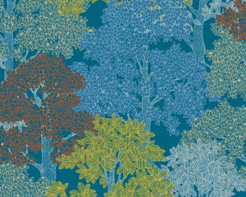 RW95377531A Colourful Trees