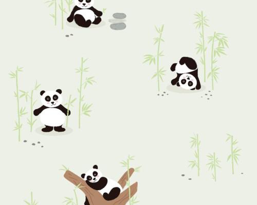 RW59381421A  Panda Wallpaper