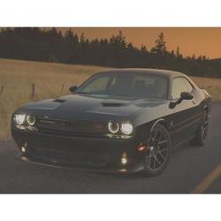 "Kooks OEM x 3"" Stainless Steel Catback Exhaust (2015+ Dodge Challenger 5.7L) - 31614220"