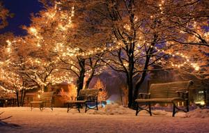 Musica per la Notte di Natale 18th December 6.00pm