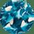 Blue Gummi Sharks