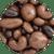 Milk & Dark Chocolate Bridge Mix