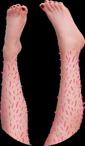 woman's legs with long leg hair