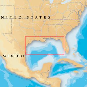 Navionics Platinum+ - Gulf Of Mexico - microSD\/SD [MSD\/907P+]