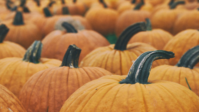 Not All Spooks And Scares: Fun Family Games For Fall