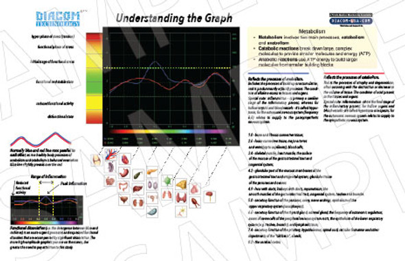 Poster, Understanding the Graph