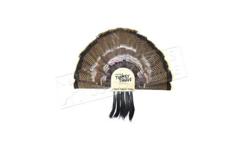 Turkey Thugs Turkey Fan Mount #99801