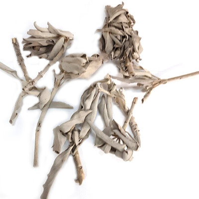 Clary Sage Loose Leaves