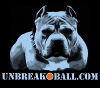 unbreakoball-logo.jpg