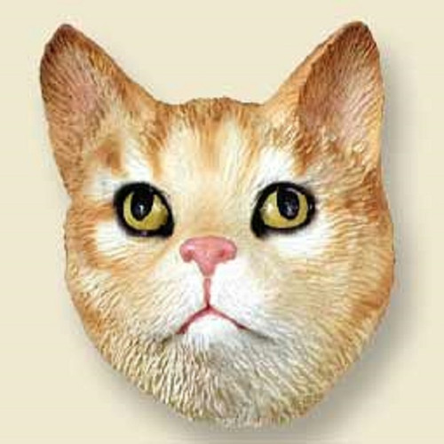 shorthaired red tabby cat doogie head