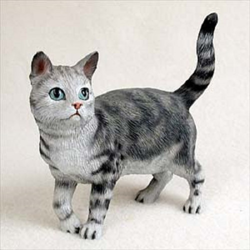 shorthaired silver cat standing
