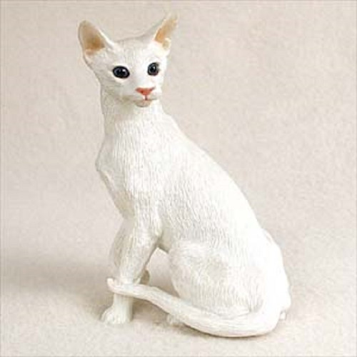 white oriental shorthaired cat