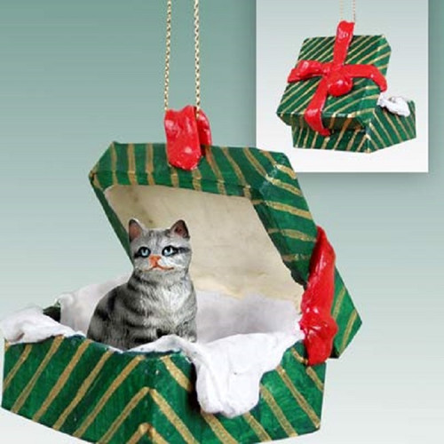 silver shorthaired green gift box