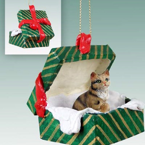 brown shorthaired green gift box