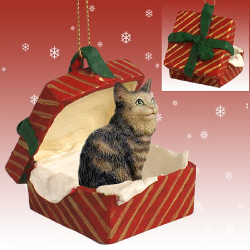 brown maine coon red gift box