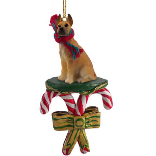 fawn great dane candy cane