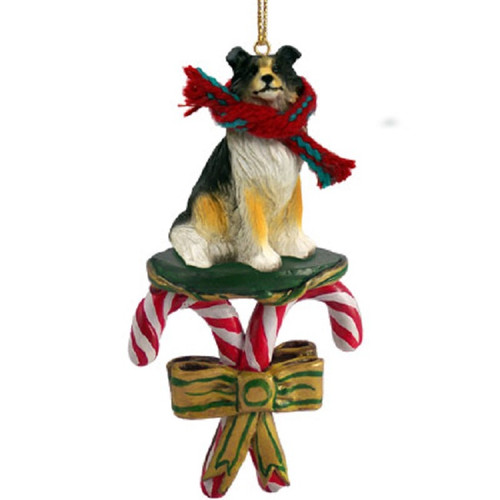 tricolor collie candy cane