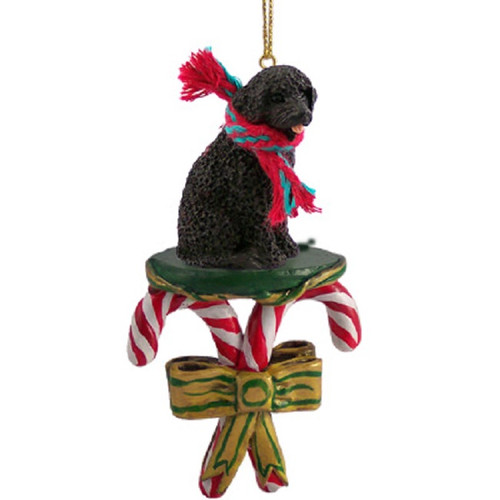 portuguese water dog candy cane