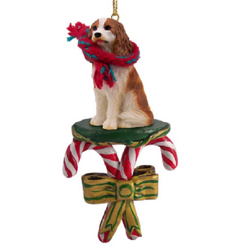 brown white cavalier king charles spaniel candy cane