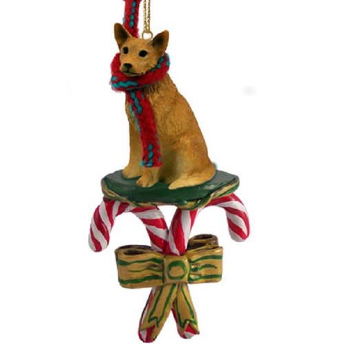 red australian cattle dog candy cane