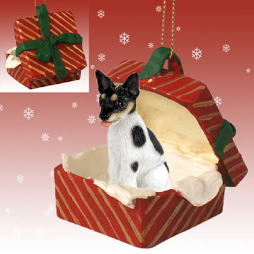 rat terrier dog Red gift box ornament