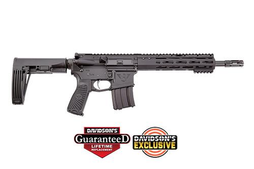 """Wilson Combat WCT PPE Pistol w/Brace 11.3"""" 5.56 DE TR-PP-556-BL-D"""