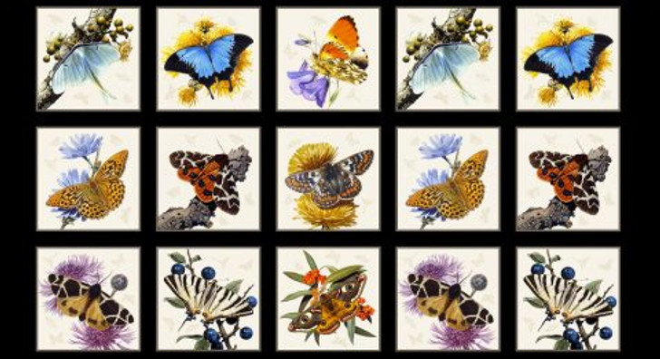 Butterflies and Moths Black Cotton Quilting Fabric Panel