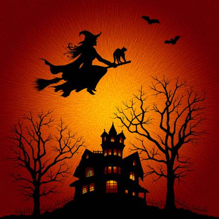 Halloween Witch Broomstick Digital Print Cotton Quilting Fabric Extra Large Panel